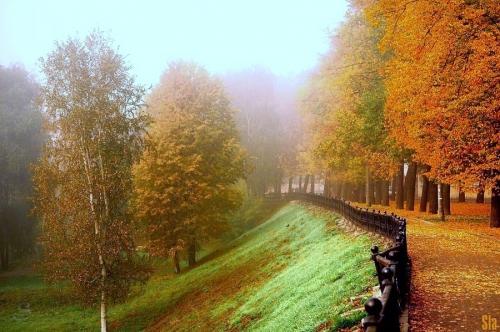 Мир в Фотографии - World In Photo 498 (60 фото)