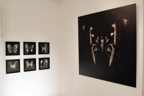 Новые работы фотографа Carsten Witte (199 фото)