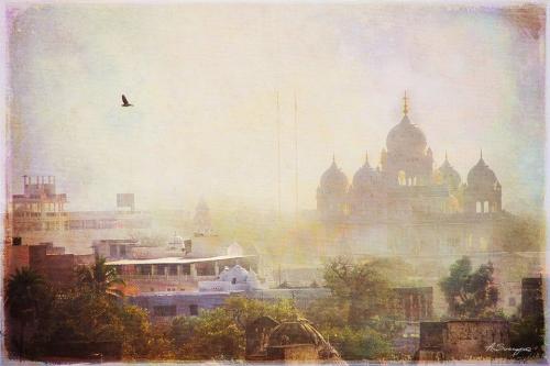 Art India от Алексея Сухопара (45 работ)