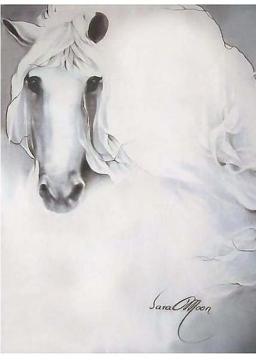 Художник Bijan Djamalzadeh  (165 работ)