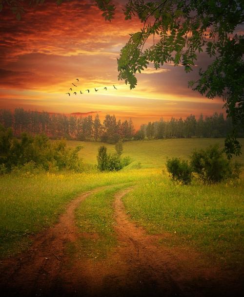Мир в Фотографии - World In Photo 497 (60 фото)