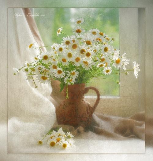 Фотохудожник-флорист Bakh Mariya (Мария - Елизавета) (234 работ)