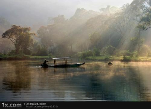 50 волшебных фотографий туманного утра (50 фото)