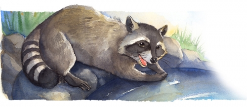 Иллюстратор Tracy Bishop (38 работ)