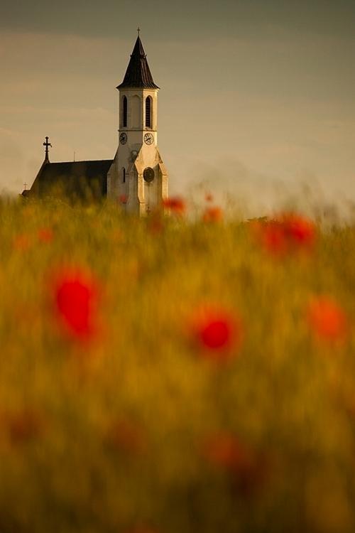 Фотограф Robert Adamec. Prerov, Czech Republic (25 фото)