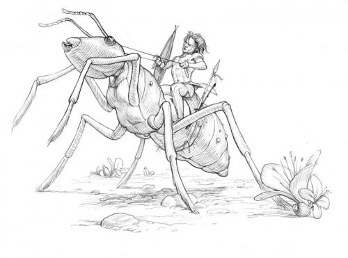 Illustrator Stephen Player (296 работ)