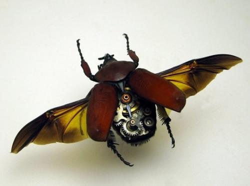 Удивительные изделия в мире – механические насекомые (50 фото)