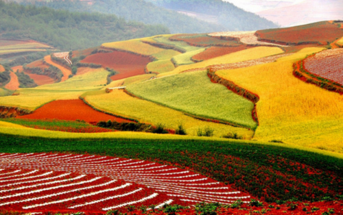 Радуга на земле. Dongchuan Red Soil (58 работ)
