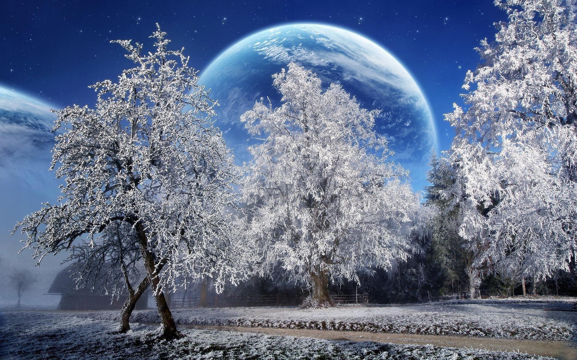 красивые картинки хорошего качества про снег бамбуковой