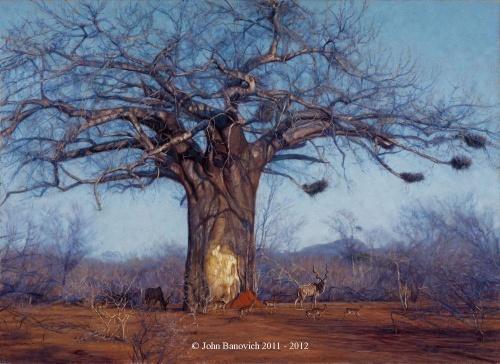 Работы John Banovich (89 работ)