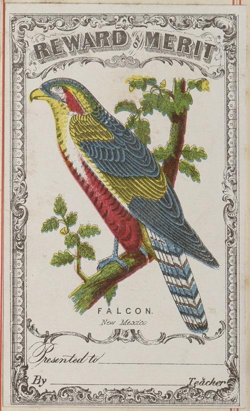 School reward cards. Ohio Gibson & Co., 1873 (94 работ)
