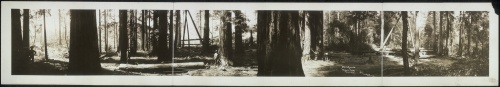 Old Panoramic Photos (1924 фото) (3 часть)