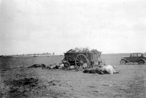 Фотографии из Национального архива США (115 фото) (2 часть)
