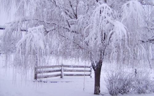 Красавица зима - красивые зимние фотографии (70 фото)