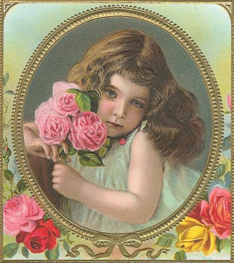 фото старинных открыток с цветами золотая шиншилла это