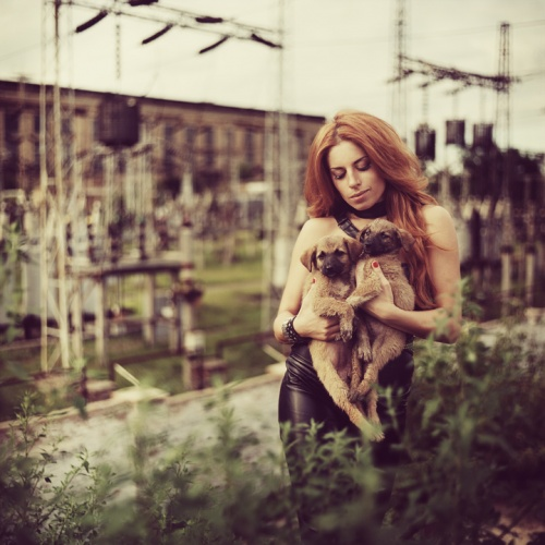 Фотограф Андрей Коротич (148 фото)