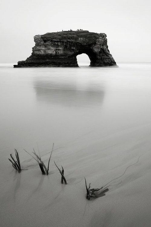 Фотограф Steven Davis (61 фото)