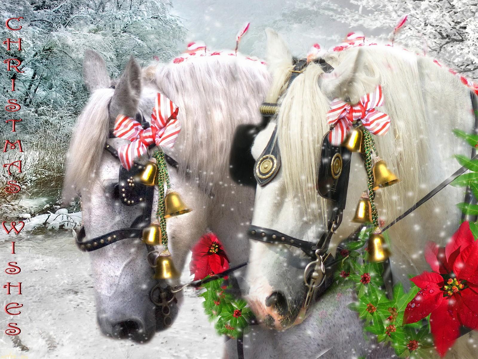 Конкурсы с на новый год с лошадкой