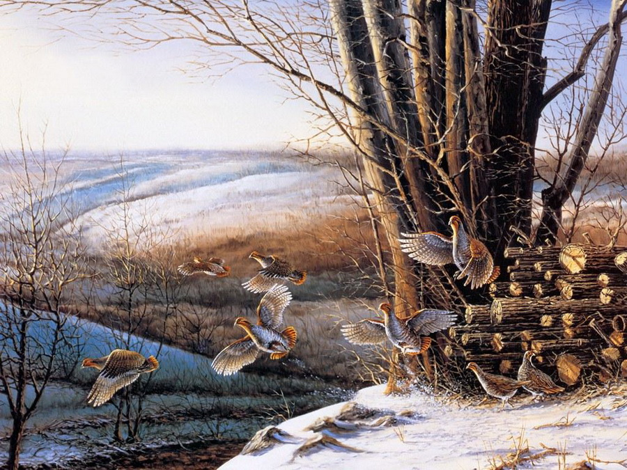 a description of terry redlins work as one of the countrys most treasured painter of wildlife and am The above is a list of 350 famous artists famous artists and paintings are treasured in of unforgettable work was created but how does one era.