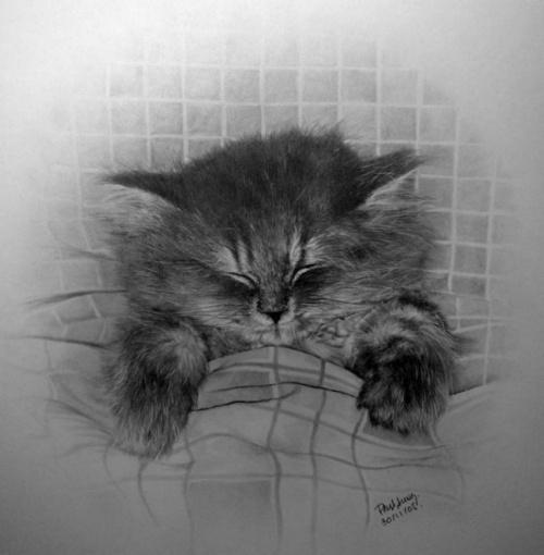 Картины карандашом (155 работ) (1 часть)