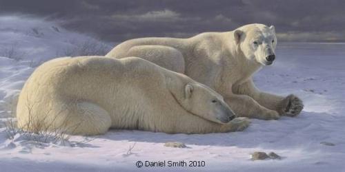 Работы Daniel Smith (67 фото)