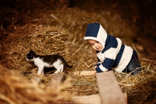 Фото в исполнении Елены Карнеевой (20 фото)